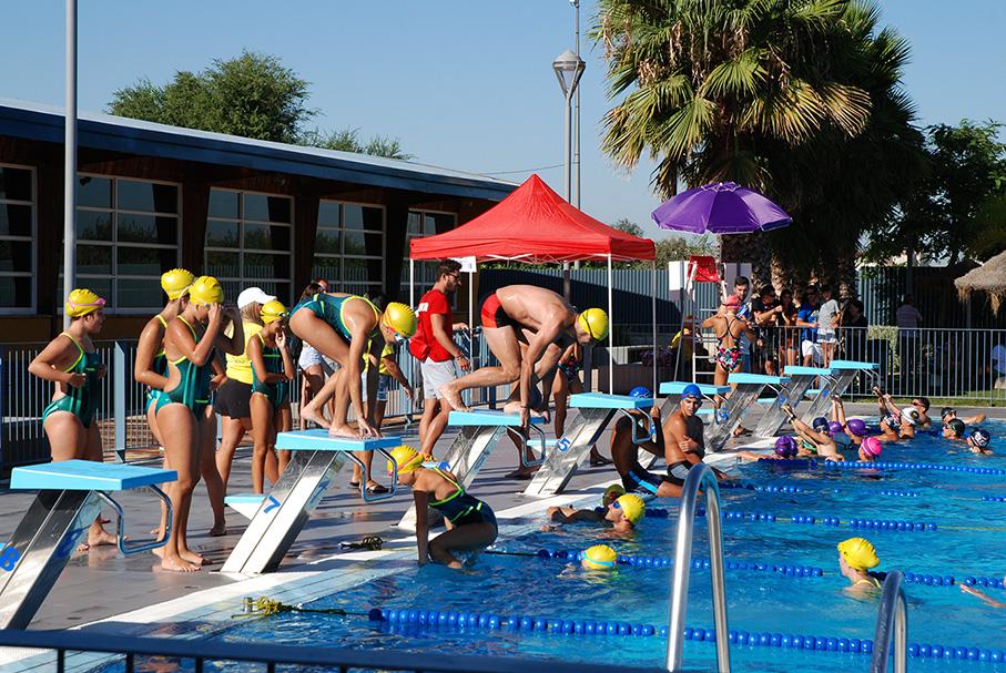 La piscina de verano acoge una prueba del circuito for Piscina 50 metros sevilla