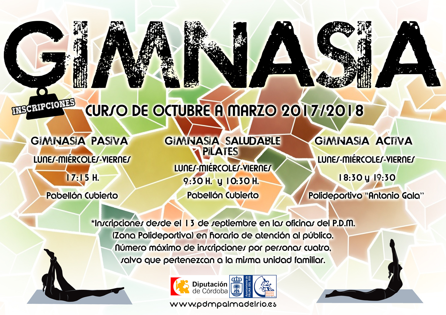 https://www.palmadelrio.es/sites/default/files/poster-gimnasia-web.jpg